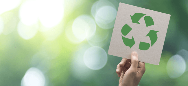 Reduce Paper Usage in the Office