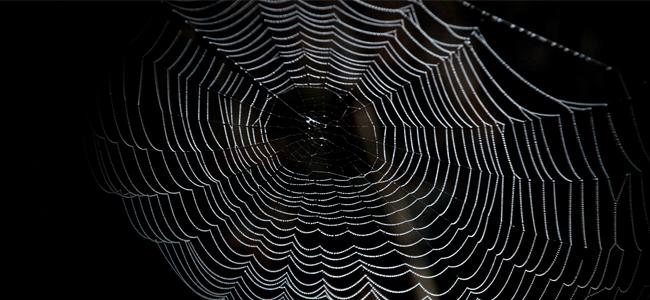 Dark Web Hack