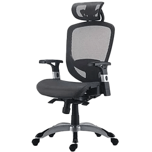 Staples FlexFit Chair